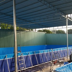 Bể Bơi Thông Minh Lắp Ghép 8,1m x 20,1m 8