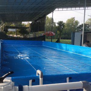 Bể Bơi Thông Minh Lắp Ghép 8,1m x 20,1m 7