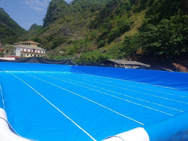 Hồ Bơi Dạy Bơi 9,6m x 20,1m 4