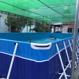 Bể Bơi Di Động Lắp Ghép 5,1m x 12,6m x 1,2m 5