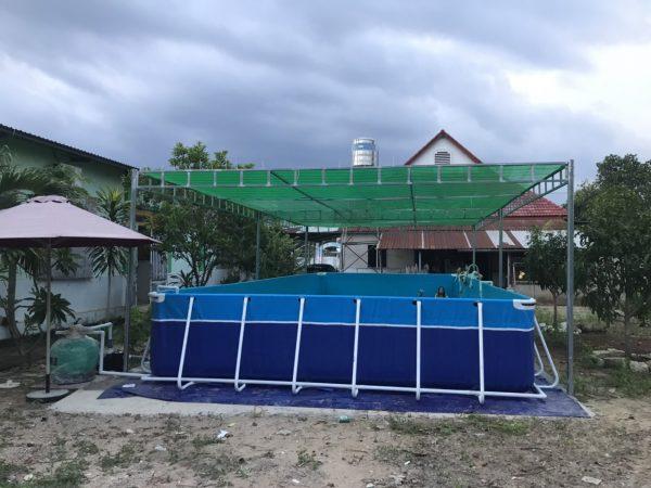 Chất liệu cấu tạo bể là bạt PVC 3 lớp